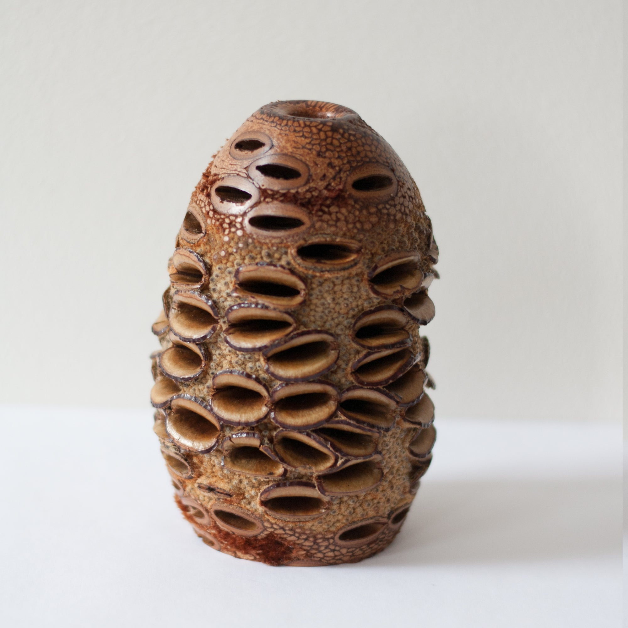 RL Wood Design - Natural Banksia Vase (rla013)