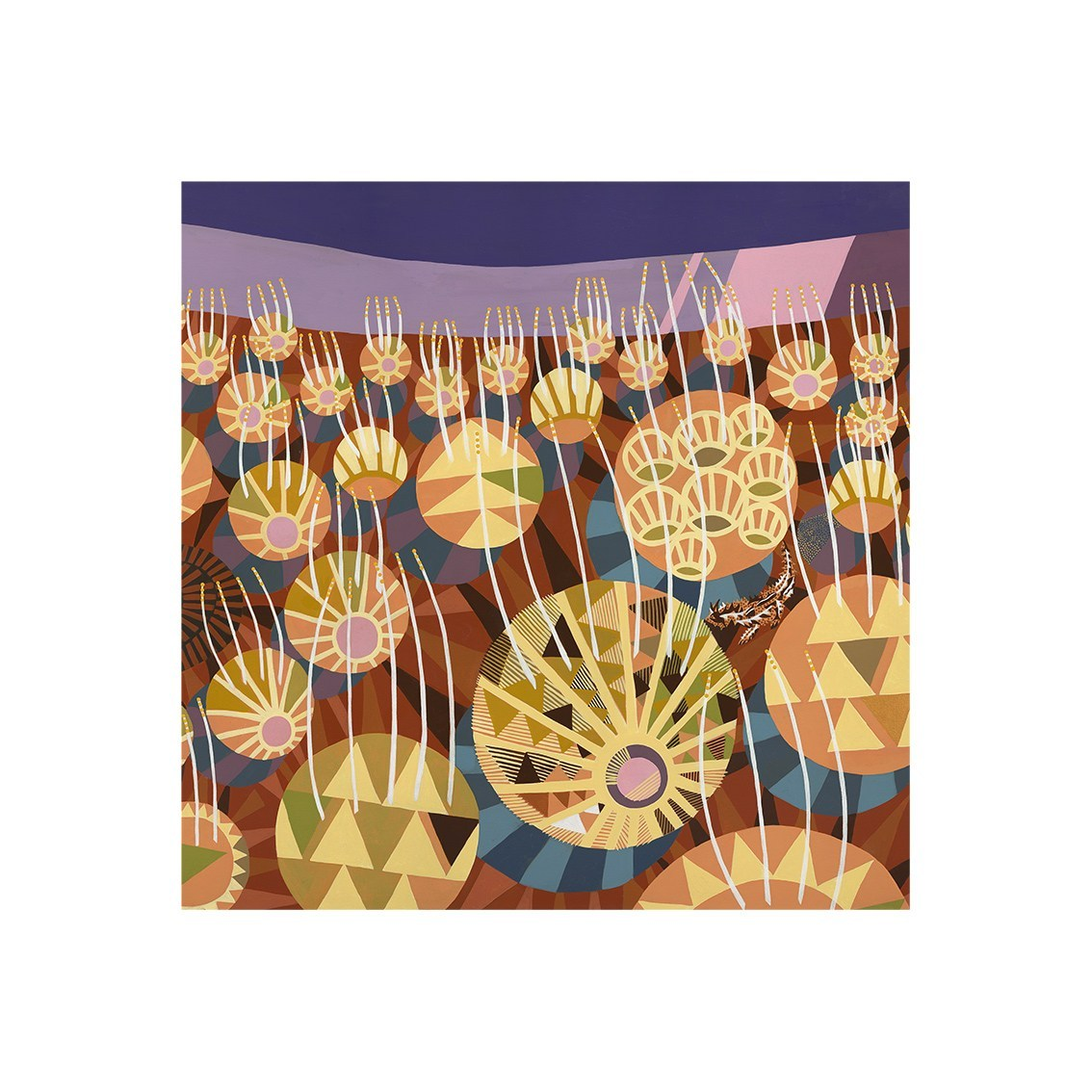 Helen Ansell -  'Spinifex at Sunset'  Giclee Print (han029)
