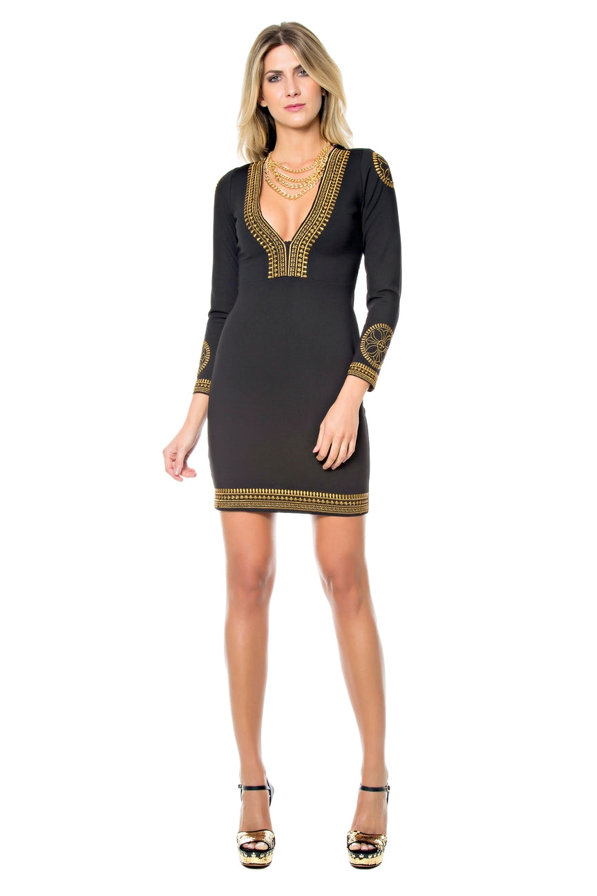 Embroidered V-Neck Bodycon Dress