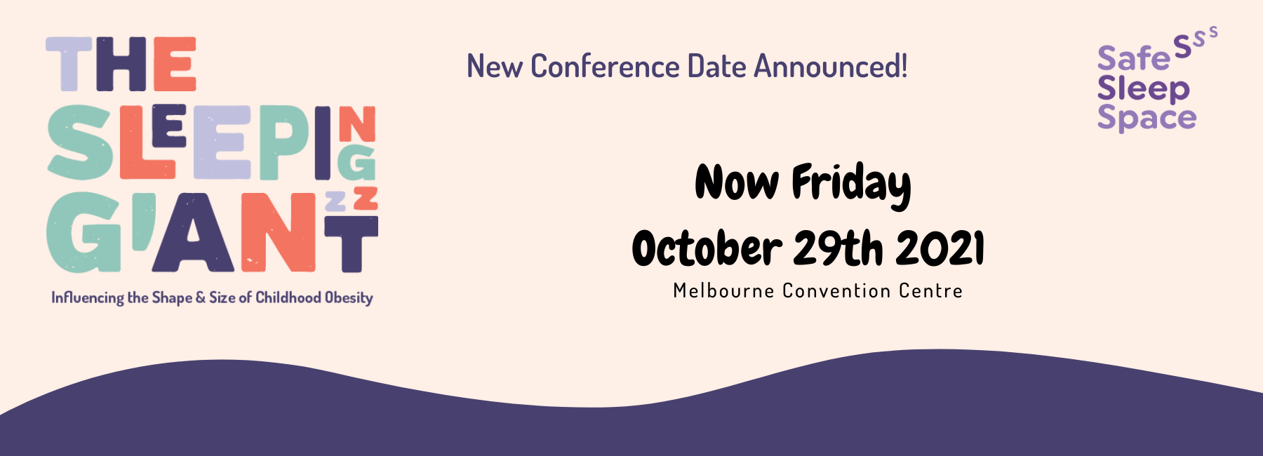 2021 Safe Sleep Space National Conference