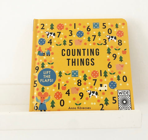 Counting Things Hardcover