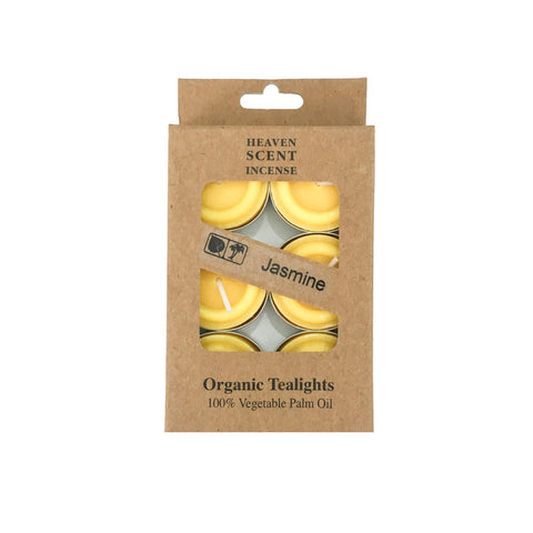 Box of 6 Jasmine Fragrance Tea Lights