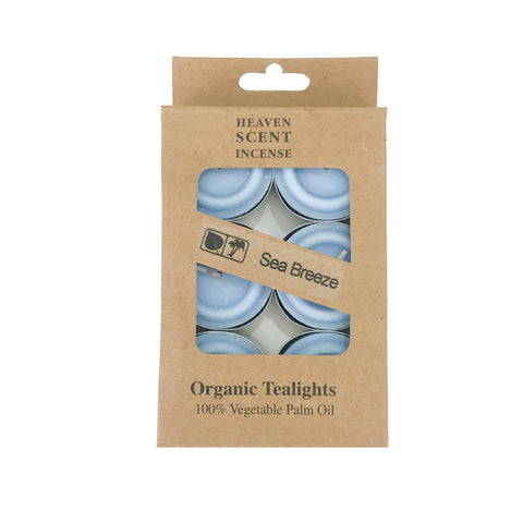 Box of 6 Sea Breeze Fragrance Tea Lights