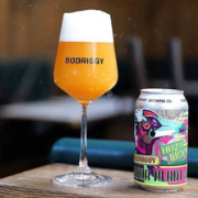 Bodrigy Brewing x Hops to Home collab - Indoor Plant Sale West Coast IPA