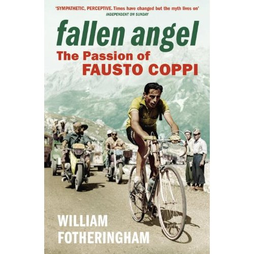 Fallen Angel book