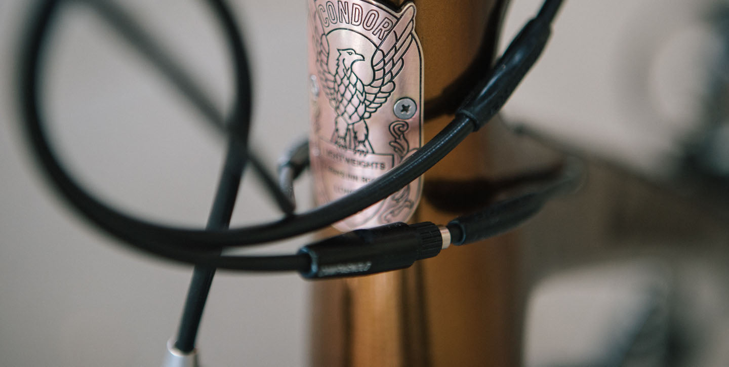 Condor brass head badge