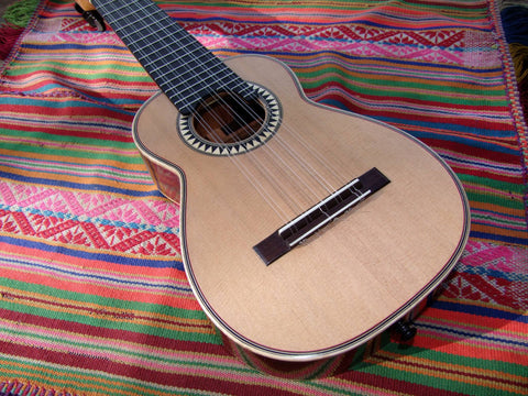 Strings - Guitar - Charango