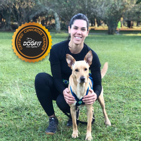DogFit Trainer Brazil