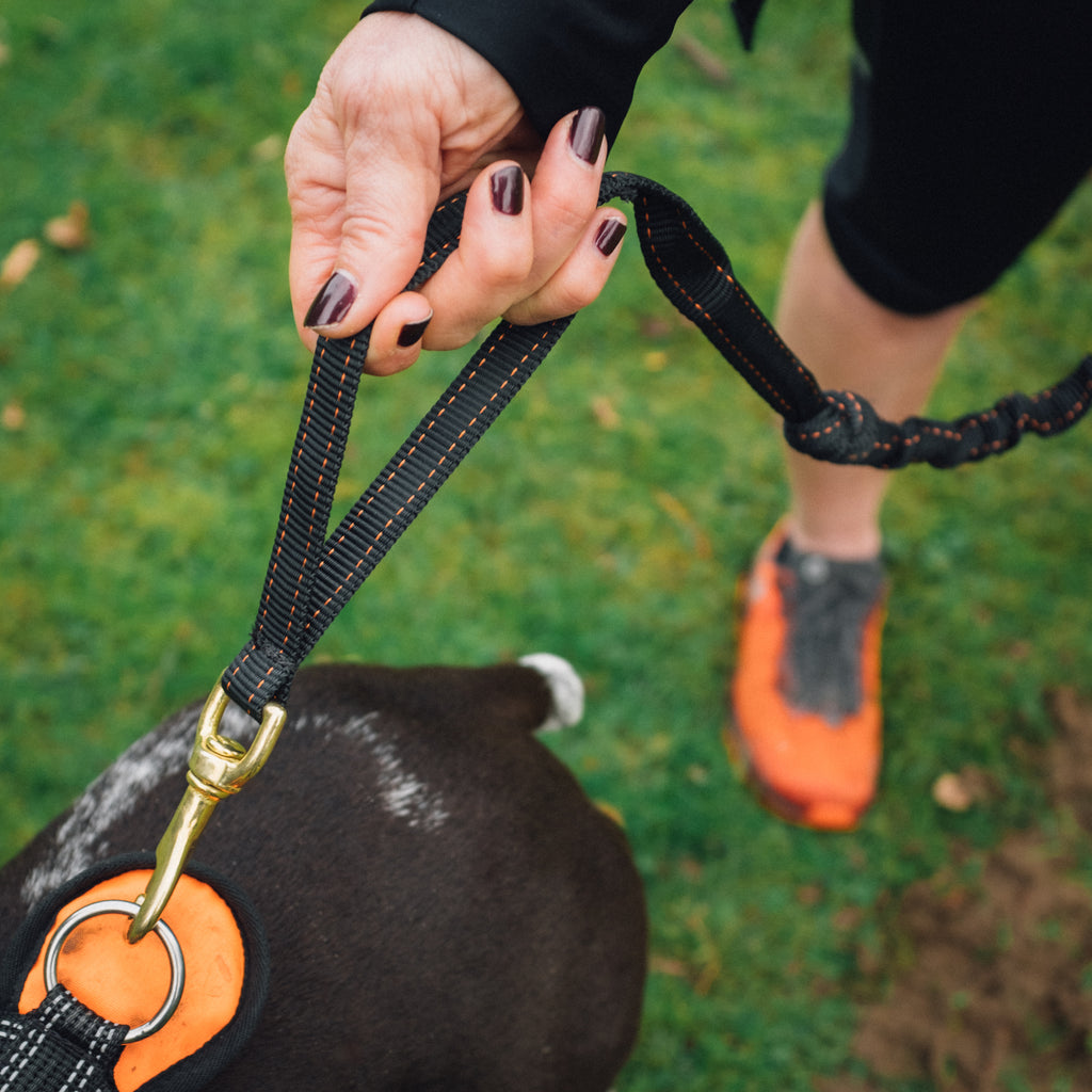 DogFit® Short Canicross PR Line