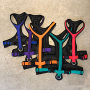 Canicross dog harness range of colours