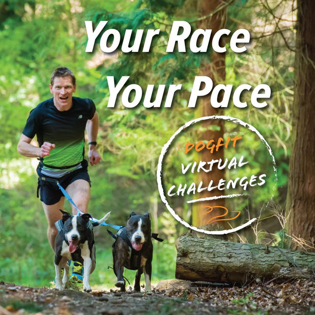 DogFit Virtual Challenges - OCTOBER 2021