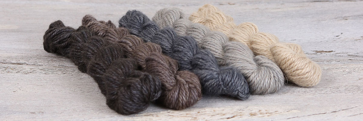 Amble Mini Skein By The Fibre Co.