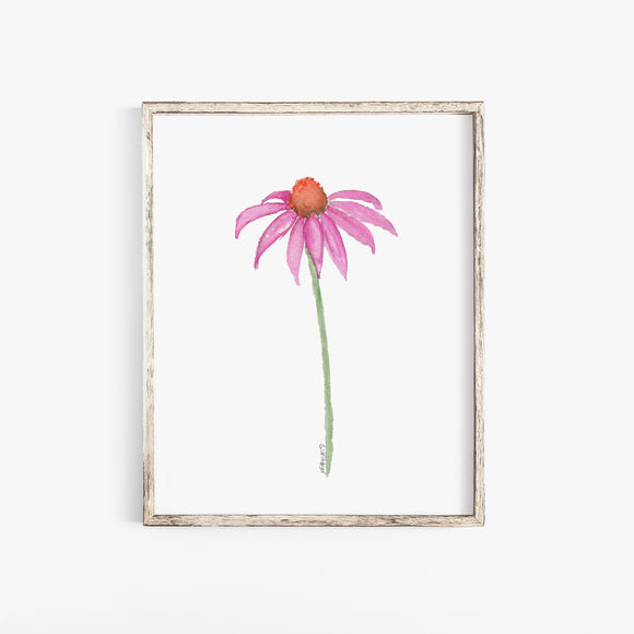 Pink Coneflower Wildflower Echinacea Daisy Watercolor Print