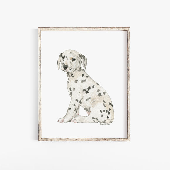 Dalmatian Puppy Dog Watercolor