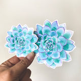 Teal Succulent Sticker