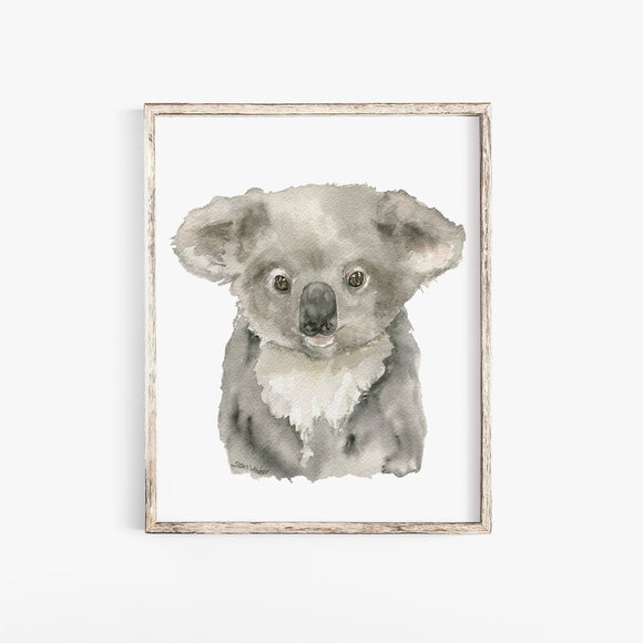 Koala Baby Watercolor