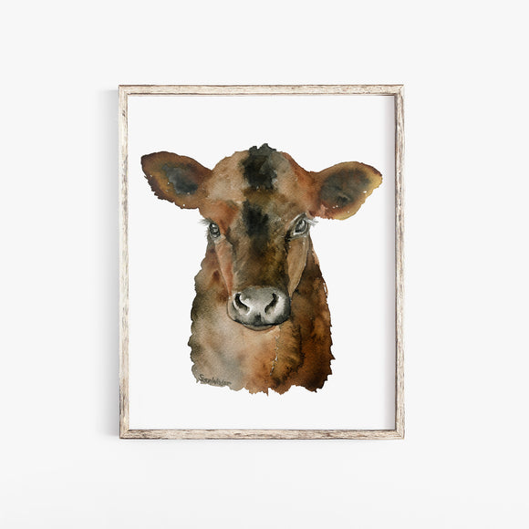 Angus Cattle Calf Watercolor