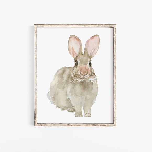 Cottontail Bunny Rabbit - Front - Watercolor Art Print