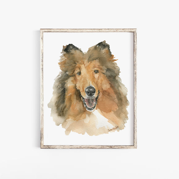 Collie Watercolor Dog Portrait Fine Art Print