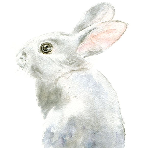 Gray Bunny Rabbit Original Watercolor Painting