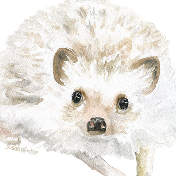Hedgehog Original Watercolor Painting