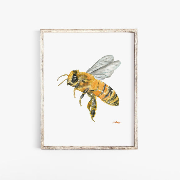 Honey Bee Watercolor