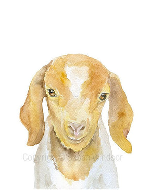Baby Animal Watercolor Art Prints - Set of 4 Animals - Goat, Calf, Rabbit, Giraffe