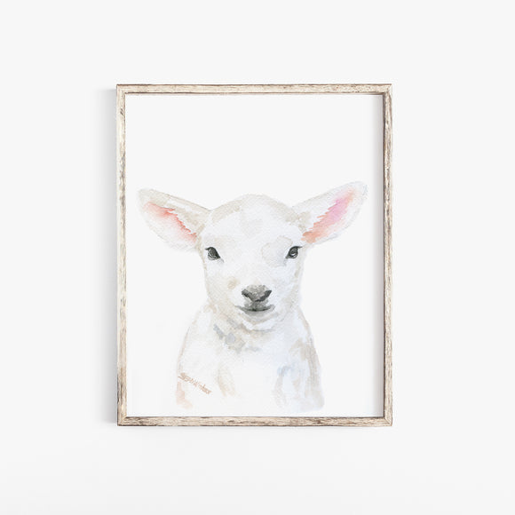 Baby Lamb Face Watercolor