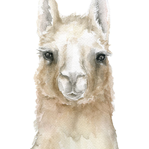 Llama Original Watercolor Painting