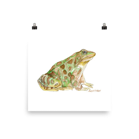 Leopard Frog Watercolor