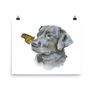 Black Labrador with a Monarch Butterfly Watercolor