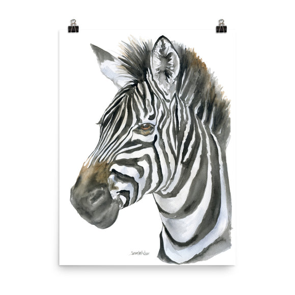 Zebra Face Watercolor
