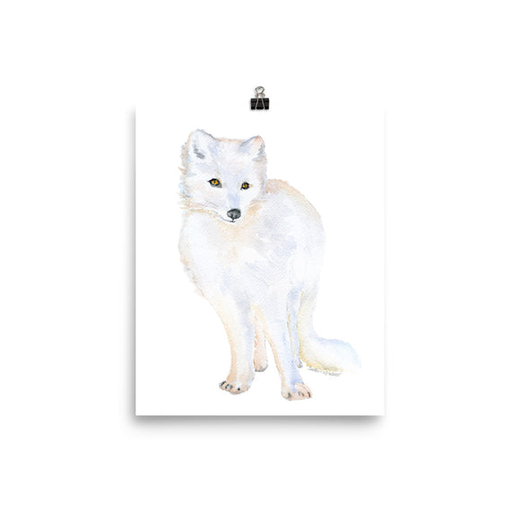 Arctic Fox Watercolor