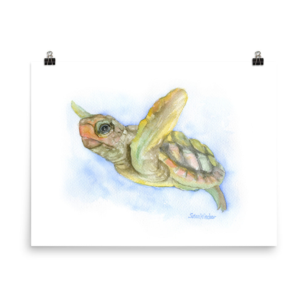 Sea Turtle Watercolor