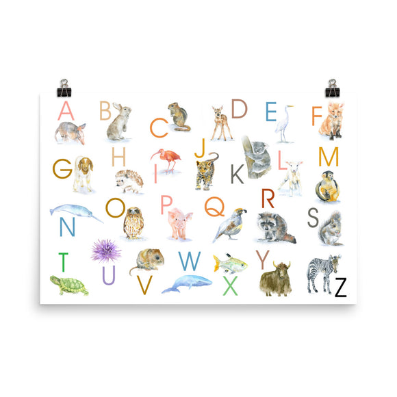 Animal Alphabet Poster - Horizontal 36x24