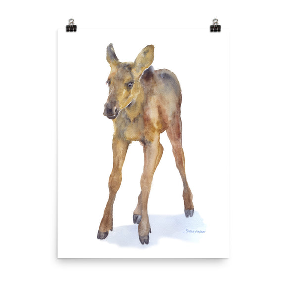 Baby Moose Calf Watercolor Print