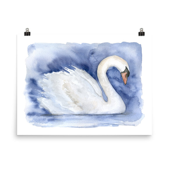 Swan Watercolor