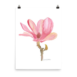 Pink Magnolia Flower Watercolor