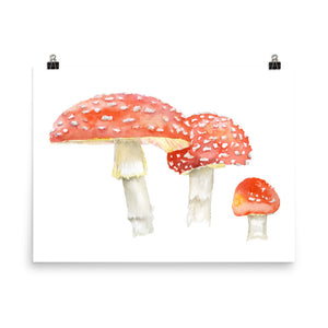 Toadstools Watercolor