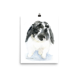 Black and White Lop Bunny Rabbit Watercolor