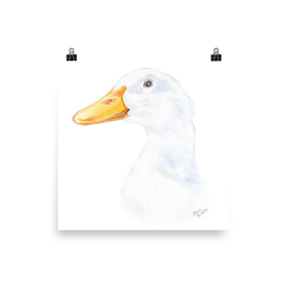 Duck Head Watercolor