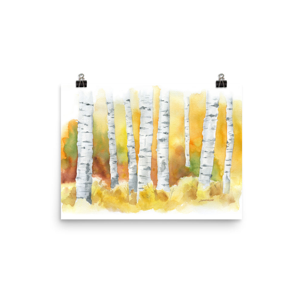 Birch Trees Watercolor Print