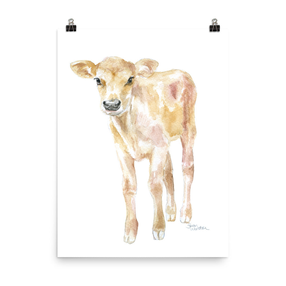 Jersey Calf Watercolor - Baby Cow