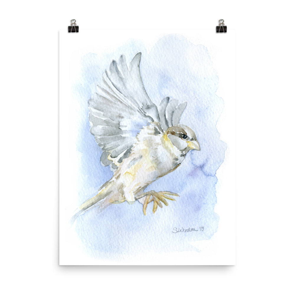 Sparrow in Flight Watercolor