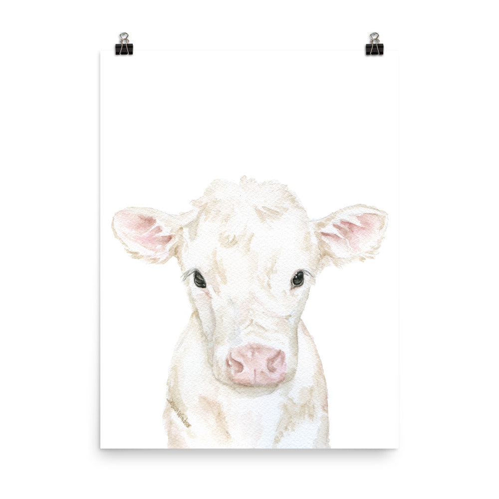 White Calf Watercolor Cow