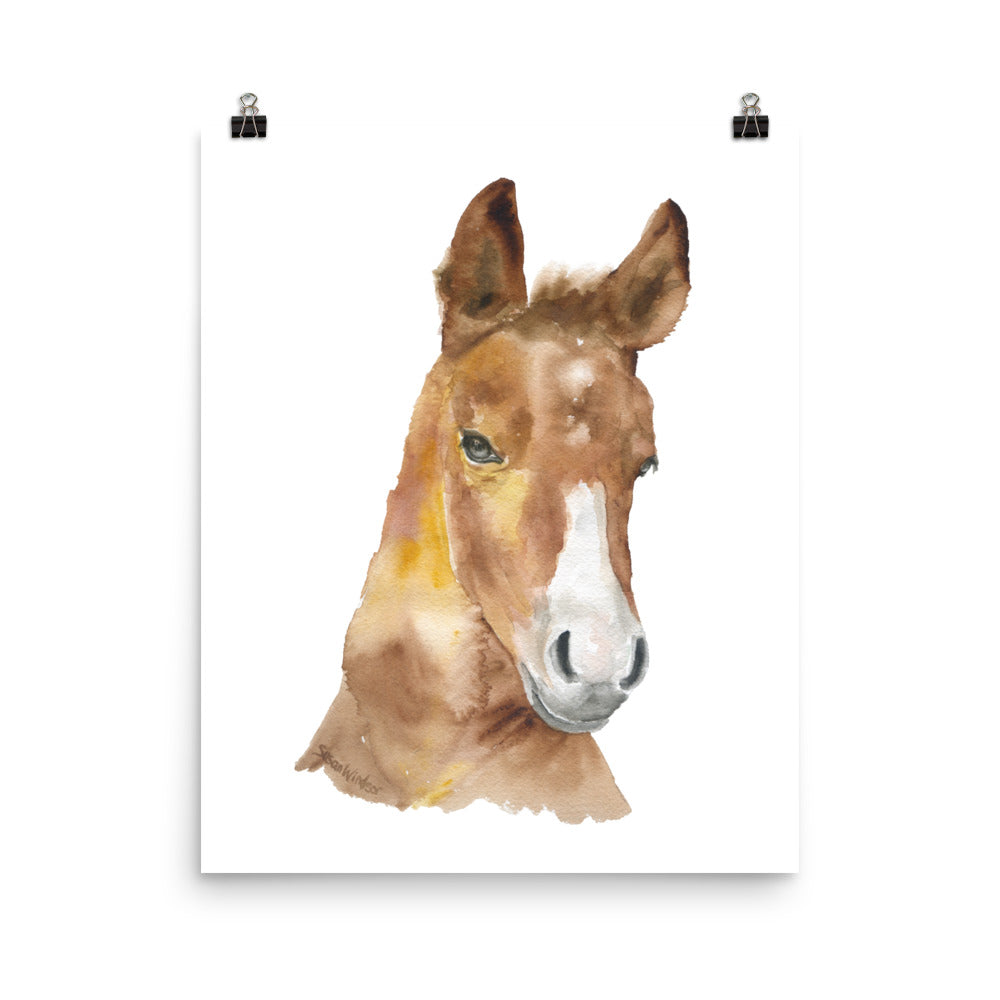 Horse Head Watercolor