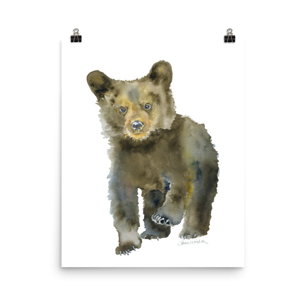 Black Bear Cub Watercolor