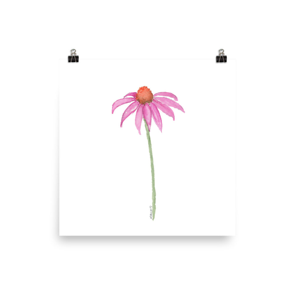 Coneflower Watercolor Print