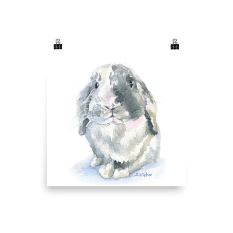 Lop Rabbit Watercolor