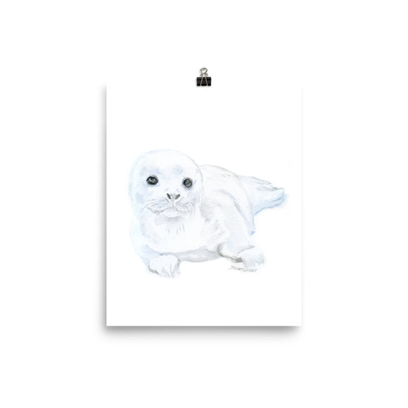 Baby Harp Seal Watercolor